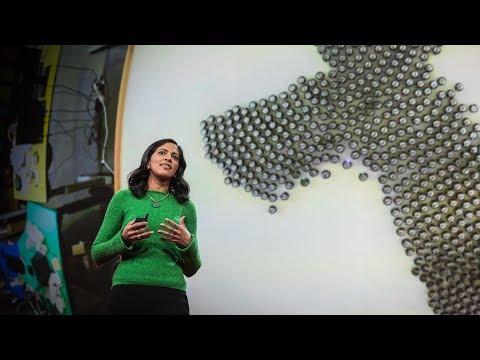ラディカ・ナグパール: 魚の群れから学習する知能機械