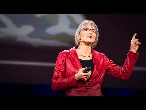 ナンシー・カンウィッシャー: 脳神経が描く私達の思考