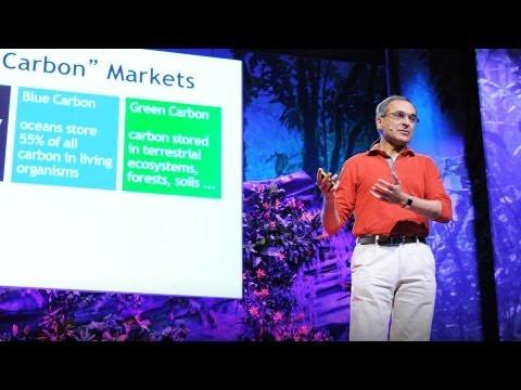 パヴァン・スクデフ: 自然に値札をつけろ!