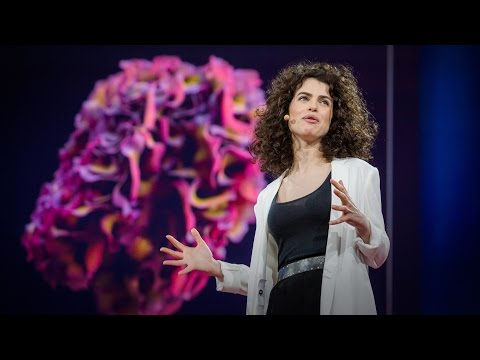 ネリ・オックスマン: テクノロジーとバイオロジーを融合したデザイン