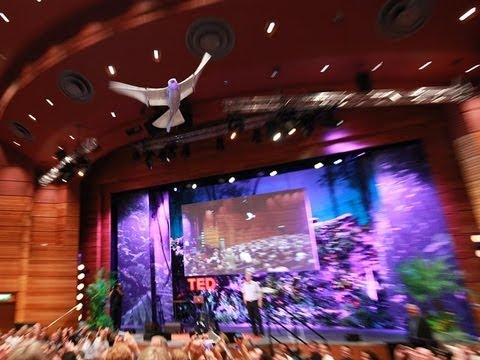 マルクス・フィッシャー: 鳥のように飛行するロボット