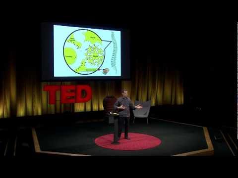 エリオット・クレーン: 慢性痛の謎