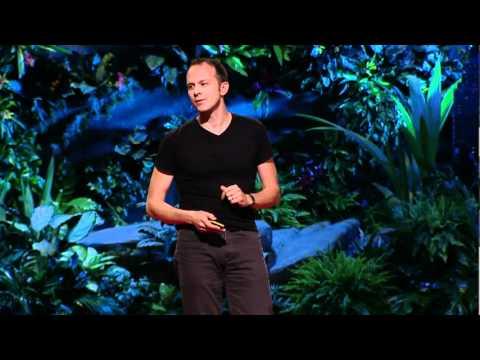 ティム・ハルフォード: 試行、錯誤、そして全能感ゆえの固定観念