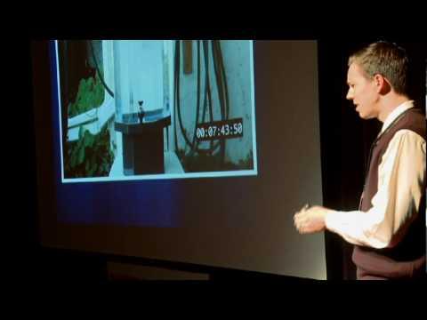 ダン・メイヤー: 数学クラス改造計画