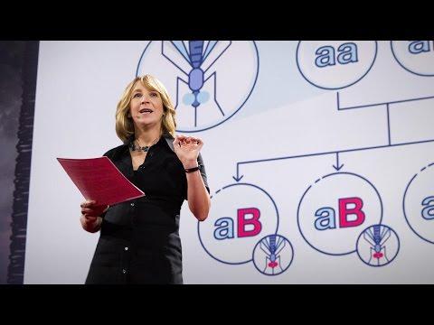 ジェニファー・カーン: 1つの生物種全体を永久に変えてしまう遺伝子編集技術