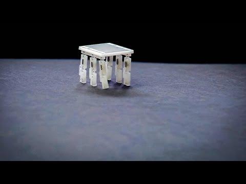 サラ・バーグブライター: 米粒のサイズのロボットを作る理由