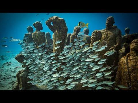 ジェイソン・デカイレス・テイラー: 生命で輝きを増す海中美術館