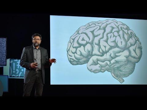 アンジャン・チャタジー: 脳はどのように美しさを判定するか?