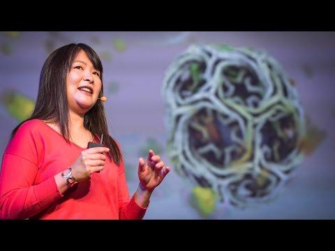 ジャネット・イワサ: アニメーションで科学者の仮説を試す方法