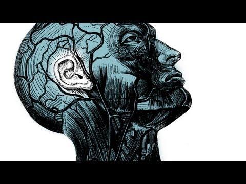 チャールズ・リム: 音楽芸術のための聴力回復