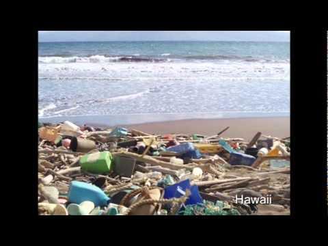 ダイアナ・コーヘン: プラスチック汚染の許容しがたい真実