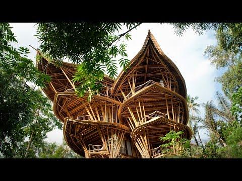エローラ・ハーディー: 魅惑のバンブーハウス ― 竹の建築