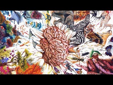 オーデッド・ショゼヨフ: 自然に潜む驚異的な力を生かす方法