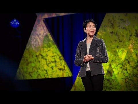 石井菜穂子: 地球を守るための経済的考察
