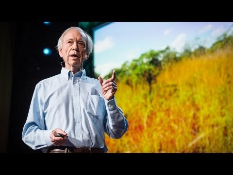 アラン・セイボリー: 砂漠を緑地化させ気候変動を逆転させる方法