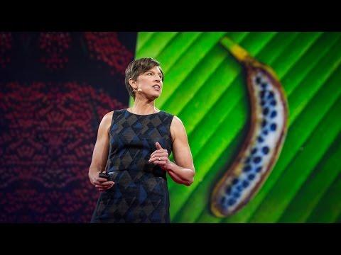 パメラ・ロナルド: 実際の遺伝子組換え食料