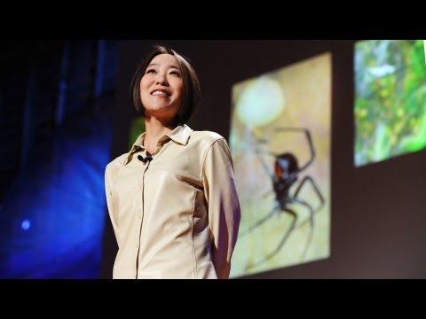 シェリル・ハヤシ: クモの糸の壮麗さ
