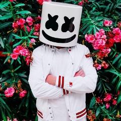 マシュメロ (Marshmello) - 動画一覧